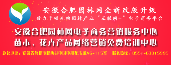 安徽合肥园林网电子商务服务中心